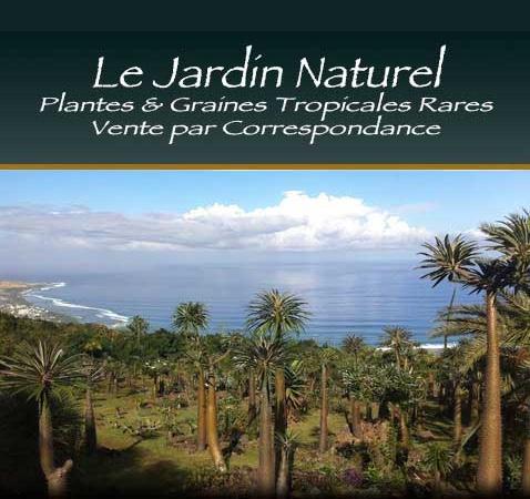Plantes et graines tropicales exotiques vente par for Commande plantes par correspondance